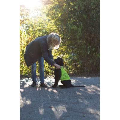 Sicherheitsweste für Hunde versch. Größen