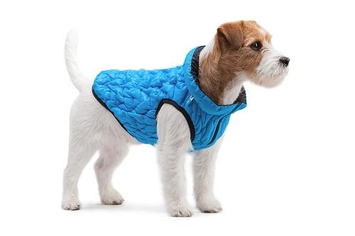 Vierbeinerwelten_Kategorie_Hunde_Transporttasche-2