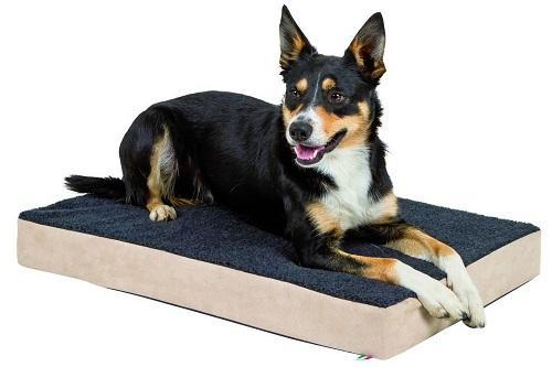 Vierbeinerwelten_Kategorie_Hundesofa-2