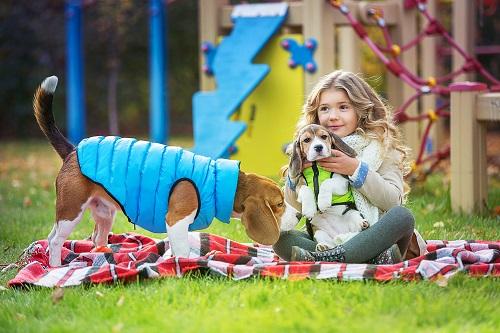 Vierbeinerwelten_Kategorie_Hundewelpen_Spielzeug-2