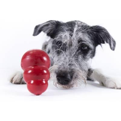 Hunde Spielzeug Kong Classic XXL, Länge:15,24 cm