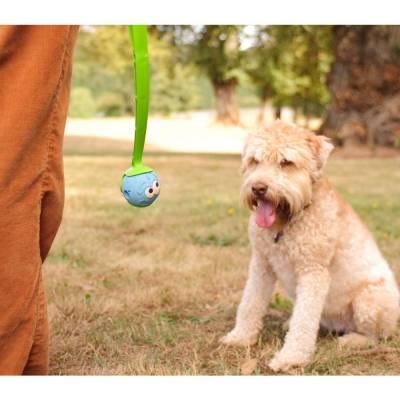 Hunde Spielzeug Ball Chuckit The Whistler M im 2er-Pack, Inhalt:2 Stück,Durchmesser:6 cm