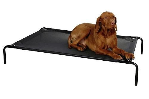 Vierbeinerwelten_Kategorie_Hundesofa-1